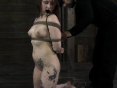 Tattooed submissve boxtied...